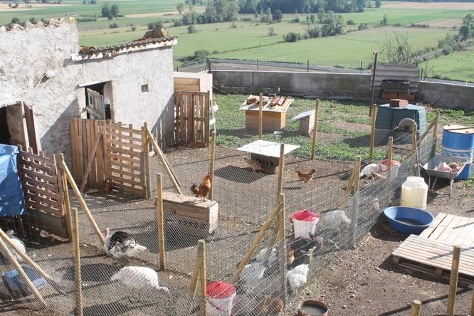 Miimosa du foie gras pour les f tes et un parc d couverte miimosa - Jeux pour lapin a fabriquer ...