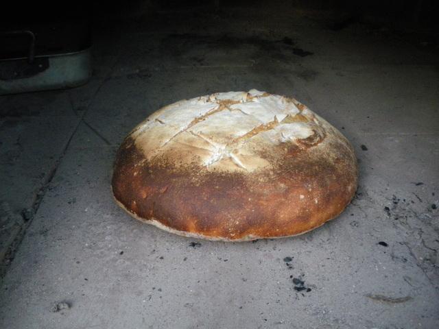 cuisson-du-pain-au-feu-de-bois.jpg