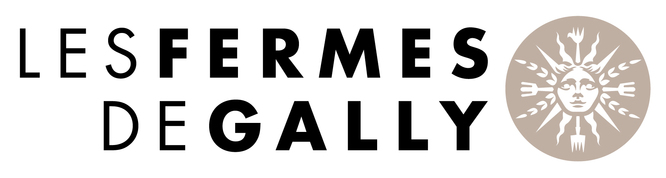 gally_logo_mère_HD.jpg