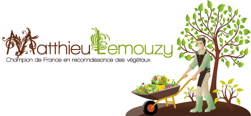 logo-mlemouzy-transparent-small.jpg