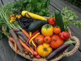 légumes_anciens.jpg