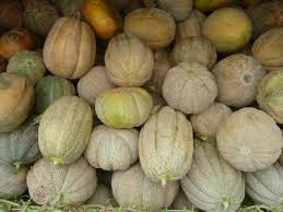 Melons_anciens.jpg