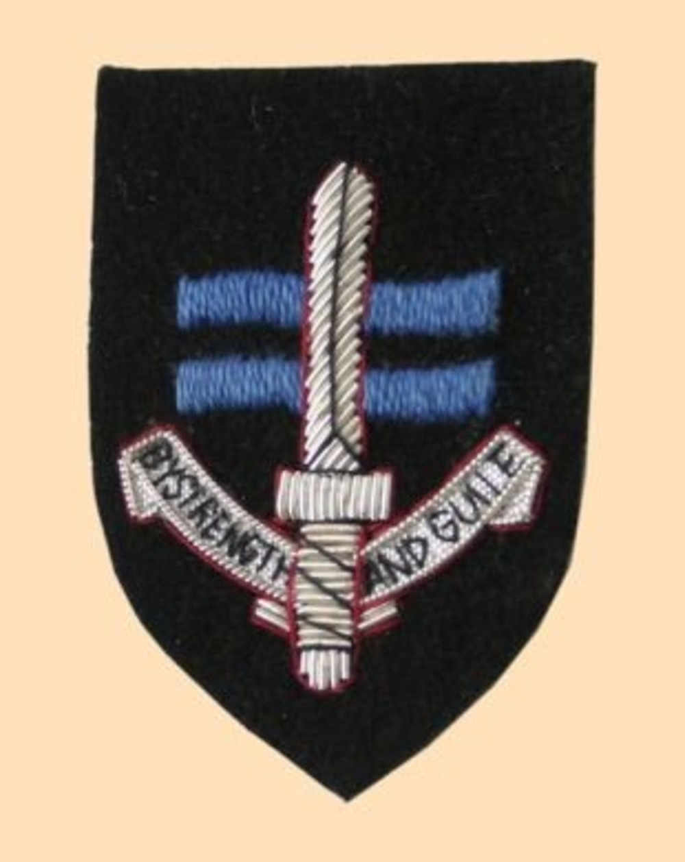 Sbs Special Boat Service Beret Badge