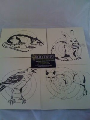 Animal Paper Square Target Pack 10