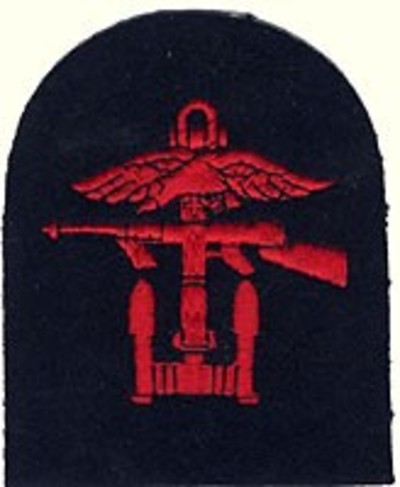 Combined Ops Left/Facing Badge