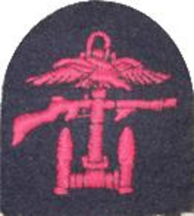Combined Ops Right/Facing Badge