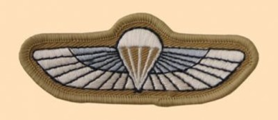 SBS Special Boat Service Wings Colour Badge