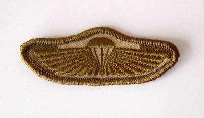 SBS Special Boat Service Wings Desert Badge