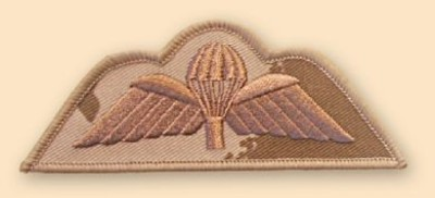 Para Wings Desert Badge