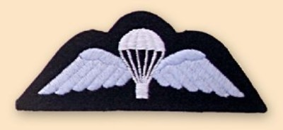 Para Wings RAF Badge