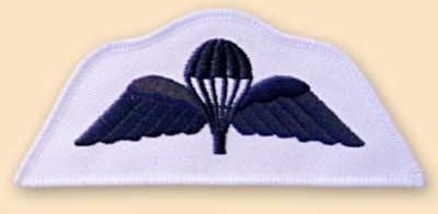 Para Wings Royal Navy Badge