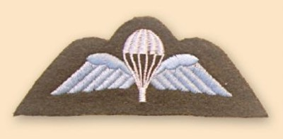 Para Wings Colour Badge