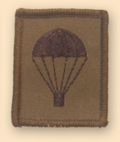 Para Trained Subdued Badge