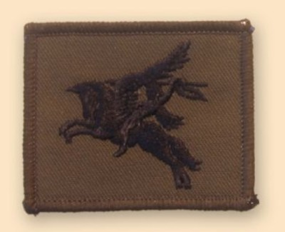 Pegasus Subdued Badge