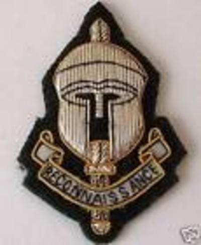 Special Recce Regt Beret Badge