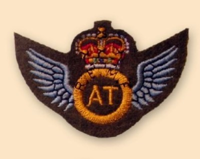 REME A/t Wings Colour Badge