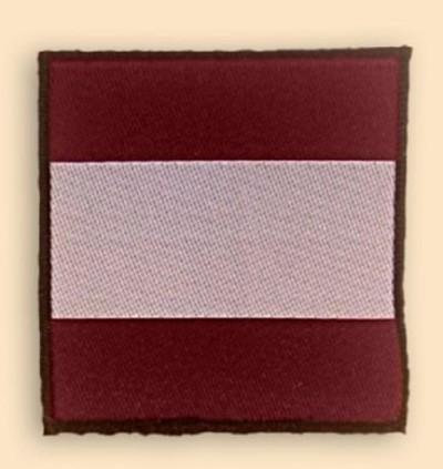 16 Air assault Brigade TRF Badge
