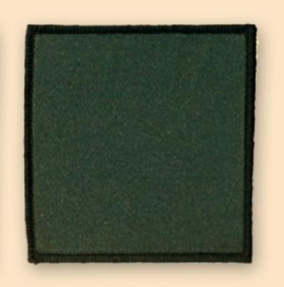 3rd Para Badge