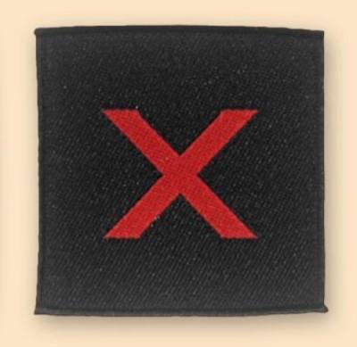 10th Para Badge
