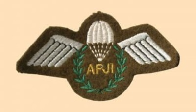 Assistant Parachute Jump Instructor Badge