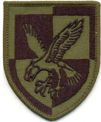 16 Air Assault Brigade Patch colour subdued desert Multicam ®