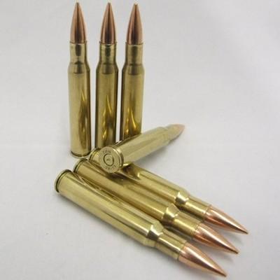 30.06 inert Bullet