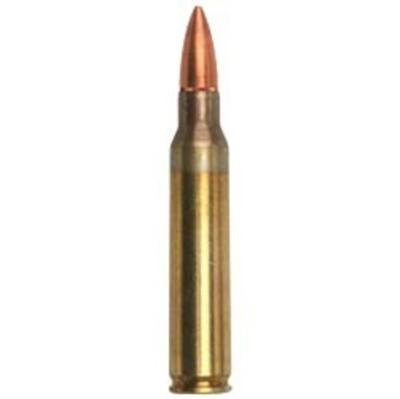5.56 Rifle Round