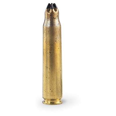 50 cal Practise Blank Bullet