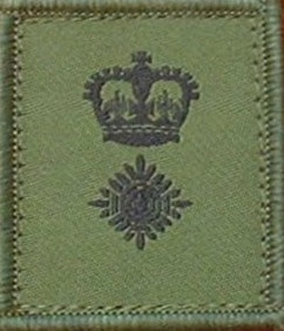 LT Colonel Helmet Patch