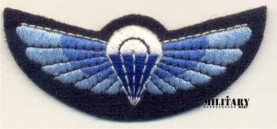 SAS wings Colour