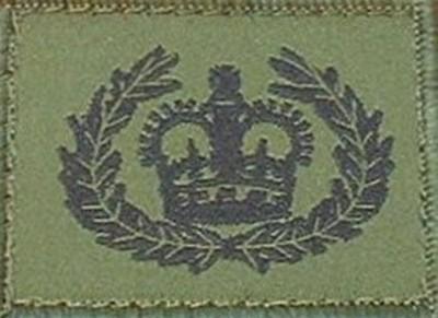 Company Quartermaster Sergeant Helmet Badge