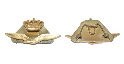 RAF eagle and crown Camp badge (genuine)