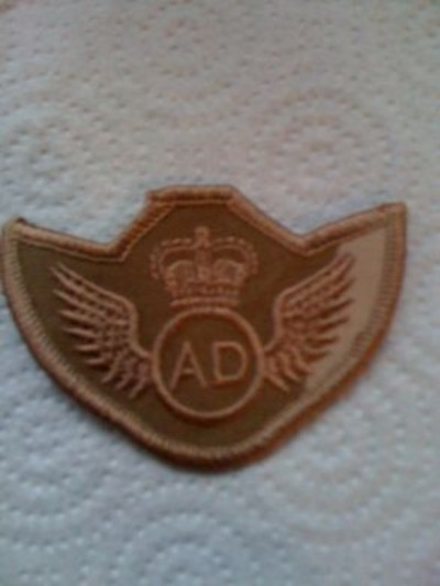 Air Dispatcher Desert Badge