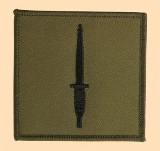 3 Commando Brigade Subdued Badge