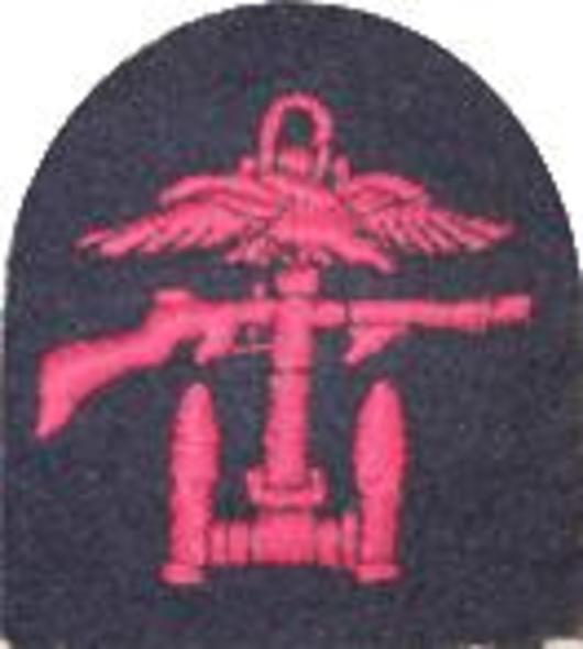 Combined Ops RightFacing Badge