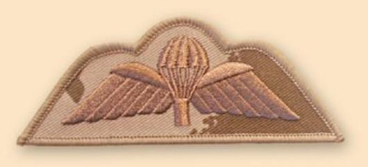 Para Wings Desert Badge