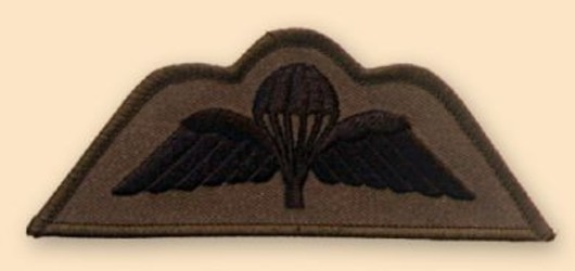Para Wings Subdued Badge