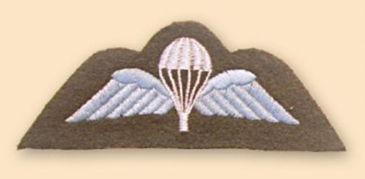 Para Wings Colour Badge