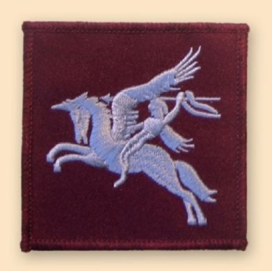 Pegasus Colour Badge