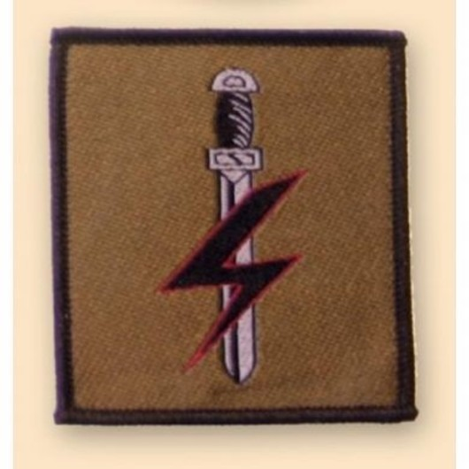 Special Forces Supp Group Colour Badge