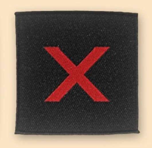10th Para Badge