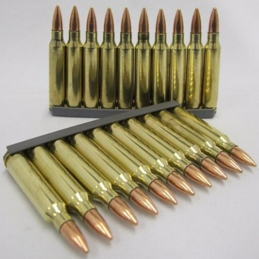 5.56mm SA80 Bullet Pack 10