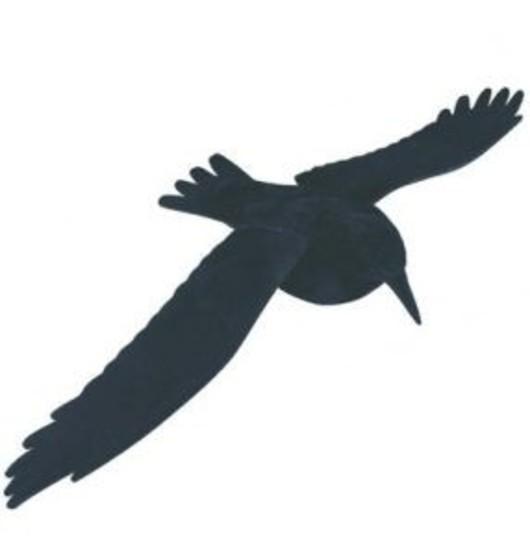 Flying Crow Decoy