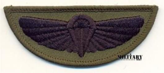 SAS wings Subdued