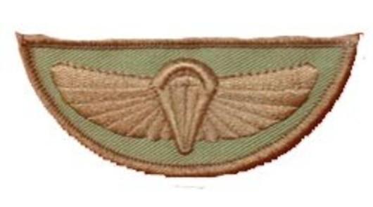 SAS Wings Desert