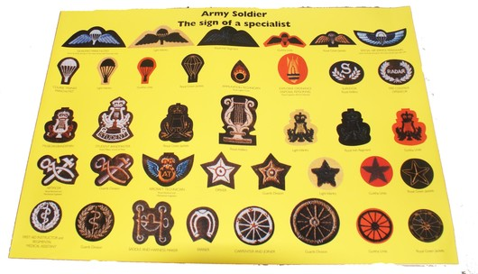 Poster Military Specialist