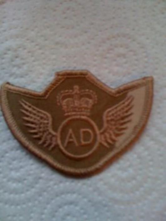 Air Dispatcher Desert Badge