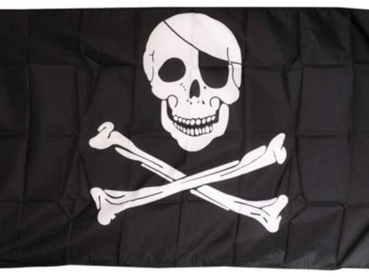 Skull  Crossbones Flag