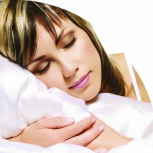 Harley Designer Comfort Pillow