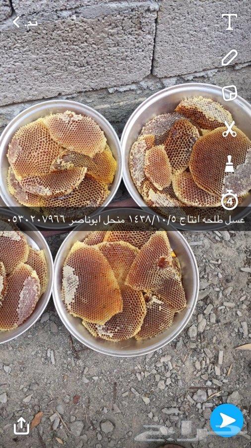 عسل طلح نتاج 1438 1010